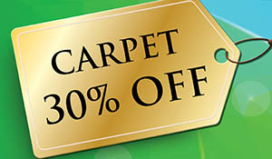 SmartStrand Silk carpet 30% off!
