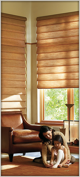 Improve the look of your home with new window fashions from Hunter Dougals.  Abbey Capitol Floors & Interiors.